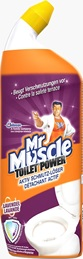 Mr Muscle® Toilet Power Aktiv Schmutz-Löser