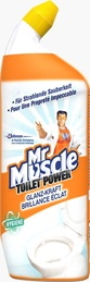 Mr Muscle® Toilet Power Glanz-Kraft
