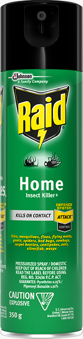 Raid® Home Insect Killer 2