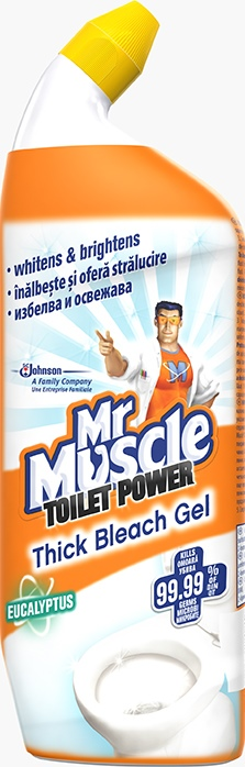 Mr Muscle® Toilet Thick Bleach Gel (Discontinued)