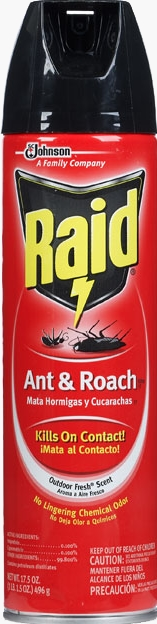 Raid® Ant & Roach Killer 26 - Outdoor Fresh®