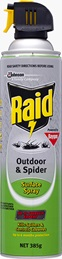 Raid® Outdoor & Spider Surface Spray (Discontinued)